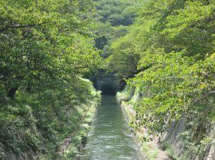 悠々と水をたたえる<br/>(公社)びわこビジターズビューロー
