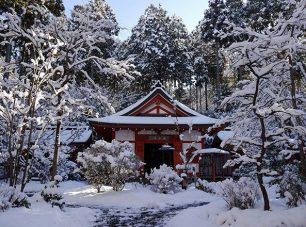 冬は銀世界となる