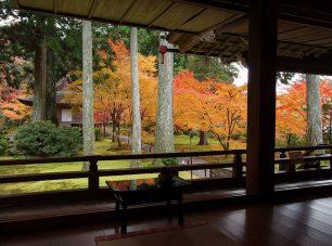 紅葉の時季には多くの人が訪れる