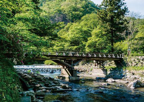<八瀬・比叡山>自然あふれる京都・八瀬から比叡山へ 紅葉・絶景をめぐる旅