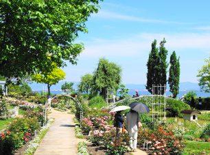 びわ湖を借景に、絵画のように美しい眺めが楽しめる「ランドスケープガーデン」。