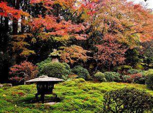 秋には紅葉が彩りを添える