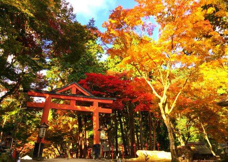 <坂本・比叡山>延暦寺と石積の門前町・坂本を歩く