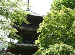 三重塔。徳川家康のよって寄進されたもの