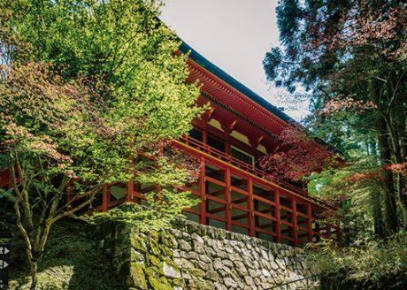 《ハイキング ⑤》東塔・西塔から横川へ延暦寺を歩いて巡拝。千日回峰行の玉体杉を拝む